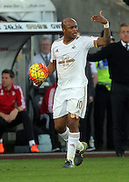 Andre Ayew of Swansea during the Barclays Premier League match between Swansea City and Arsenal at the Liberty Stadium, Swansea on October 31st 2015