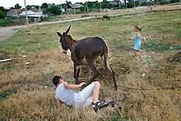 REPUBLIC OF MOLDOVA, Gagauzia, Vulcanesti, 2009/06/29..Children playing with the donkeys at the exit of the village of Vulcanesti..© Bruno Cogez / Est&Ost Photography..REPUBLIQUE MOLDAVE, Gagaouzie, Vulcanesti, 29/06/2009..Des enfants jouent avec les enes e la sortie du village de Vulcanesti..© Bruno Cogez / Est&Ost Photography