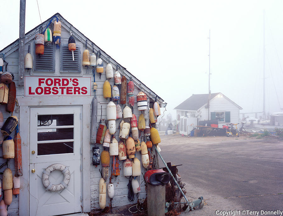Mystic, CT<br /> Morning fog on the fishing dock and Ford's Lobster shack on the Mystic River, Noank, CT