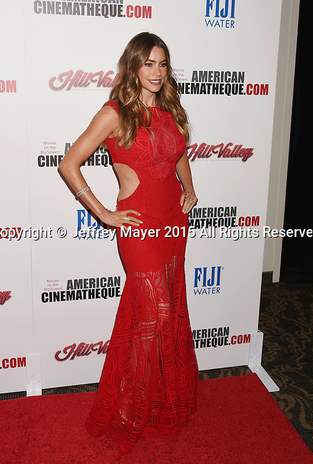 LOS ANGELES, CA - OCTOBER 30: Actress Sofia Vergara arrives at the 29th American Cinematheque Award honoring Reese Witherspoon at the Hyatt Regency Century Plaza on October 30, 2015 in Los Angeles, California.