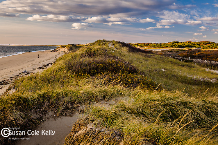 Herring Cove Beach, Cape Cod National Seashore, MA