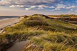 Herring Cove Beach, Cape Cod National Seashore, MA