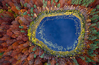 A view over a lake in a forest with trees changing colour in Autumn in Kashubia.