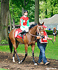 Gala's Bank before The Small Wonder Stakes at Delaware Park on 9/12/15