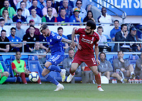 Cardiff City's Joe Bennett shields the ball from Liverpool's Mohamed Salah<br /> <br /> Photographer Ian Cook/CameraSport<br /> <br /> The Premier League - Cardiff City v Liverpool - Sunday 21st April 2019 - Cardiff City Stadium - Cardiff<br /> <br /> World Copyright © 2019 CameraSport. All rights reserved. 43 Linden Ave. Countesthorpe. Leicester. England. LE8 5PG - Tel: +44 (0) 116 277 4147 - admin@camerasport.com - www.camerasport.com