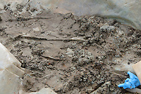 COPY BY TOM BEDFORD<br /> Pictured: Mud and soil that has been searched through by forensics officers in the area where the remains of a body were discovered in Malia, Creete, Greece. Friday 17 February 2017<br /> Re: Police have found the remains of the body in a well near a cemetery in Malia, on the Greek island of Crete with local news outlets speculating that it maybe that of 20 year old Briton Steven Cook who went missing on the 1st of September 2005. A disposable camera and a belt were reportedly found next to the remains.