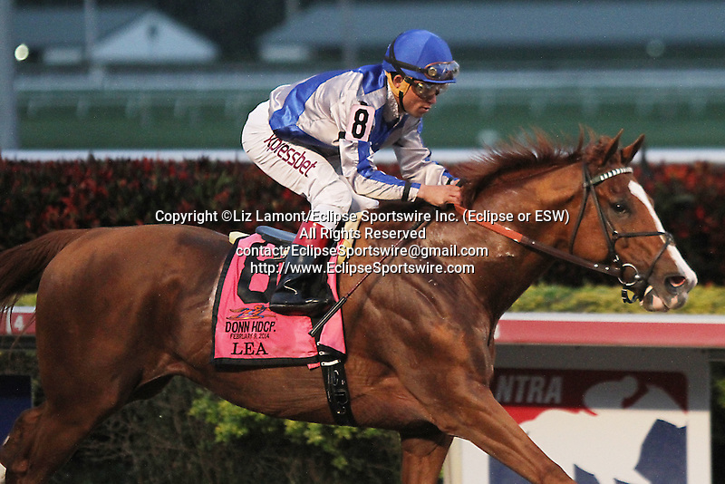 Lea with Joel Rosario up on their way to winning the Donn Handicap(G1) at Gulfstream Park, Hallandale Beach Florida. 02-09-2014