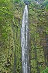 USA, HI, Maui, Haleakala NP, Waimoku Falls Drops Over 400 Feet in the Kipahlu Valley
