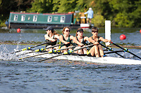 Race: 158  W.MasB.4x  Exeter/Star Composite vs Abingdon Rowing Club<br /> <br /> Henley Masters Regatta 2019 - Saturday<br /> <br /> To purchase this photo, or to see pricing information for Prints and Downloads, click the blue 'Add to Cart' button at the top-right of the page.