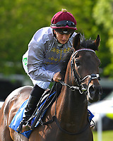 Ghayadh ridden by Josephine Gordon goes down to the start of The Penang Turf Club Malaysia Handicap (Class 5)   during Afternoon Racing at Salisbury Racecourse on 17th May 2018