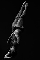 Patrick Hausding of Germany competes in the diving Men's 3m Springboard final at the Nambu University Aquatics Center, Gwangju South Korea on July 18 2019 <br /> 18th FINA World Aquatics Championships<br /> Photo © Andrea Staccioli / Deepbluemedia / Insidefoto