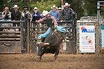 SEBRA - Appomattox, VA - 10.10.15 - Round 1 Bulls