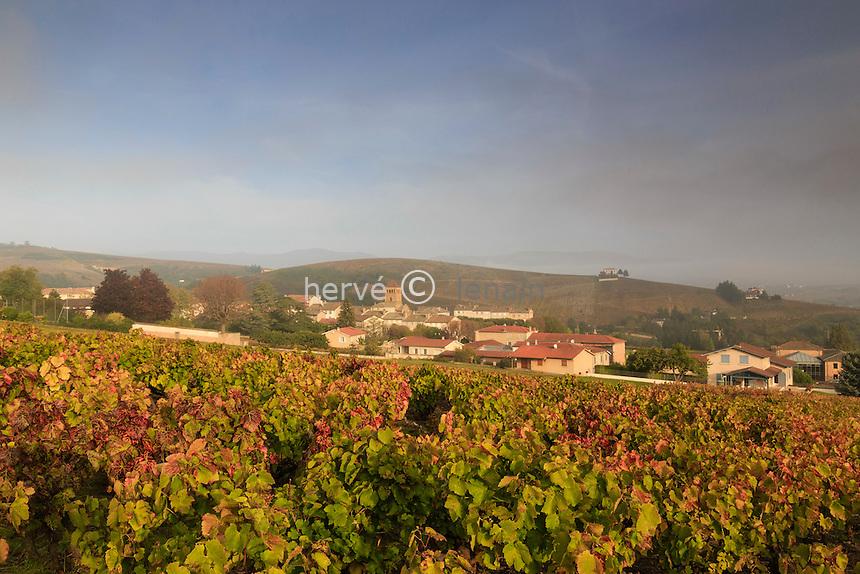 France, Rhône (69), région du Beaujolais, Salles-Arbuissonnas-en-Beaujolais, et le vignoble en automne // France, Rhone, Beaujolais region, Salles-Arbuissonnas-en-Beaujolais, the village and the vineyards in autumn