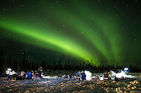 Mushers feed their dogs as the Northern lights light up the sky at the Cripple checkpoint on Thursday March 10 during Iditarod 2016.  Alaska.    <br /> <br /> Photo by Jeff Schultz (C) 2016  ALL RIGHTS RESERVED