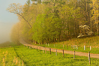 Early morning view of Hyatt Lane, Cades Cove, Great Smoky Mountains National Park, Tennessee