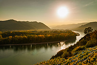 Oesterreich, Niederoesterreich, Kulturlandschaft Wachau - UNESCO Weltkultur- und Naturerbe, bei Duernstein: Blick aus den Weinbergen flussaufwaerts | Austria, Lower Austria, Wachau Cultural Landscape - UNESCO World's Cultural and Natural Heritage, near Duernstein: view from the vineyards upstream