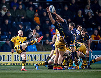 25th January 2020; Sixways Stadium, Worcester, Worcestershire, England; Premiership Rugby, Worcester Warriors versus Wasps; Anton Bresler of Worcester Warriors blocks the kick of Dan Robson of Wasps