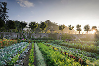 Kasteel Hex - Kitchen Garden (15th - 16th September 2014)