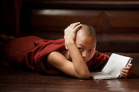 Young monk reading in a monastery in Yangon, Myanmar