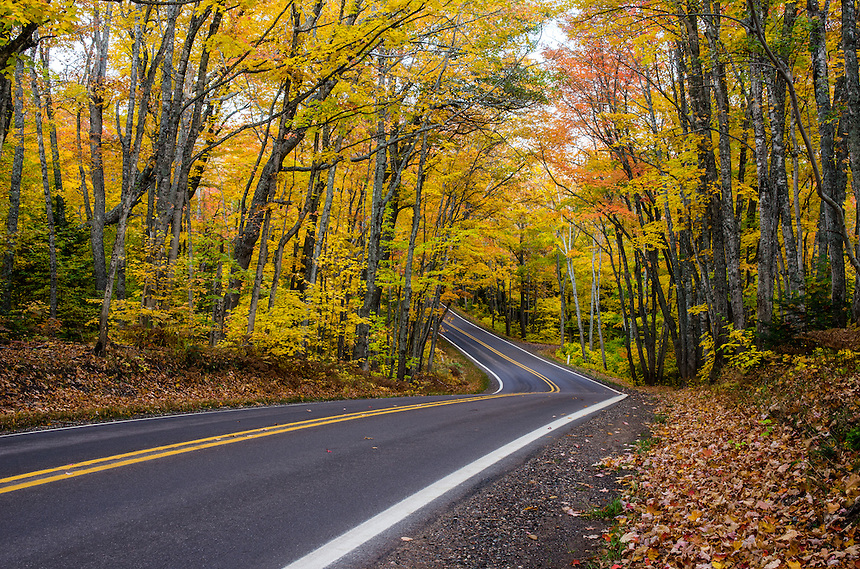 Canopy of color on US41 driving towards Copper Harbor, Michigan.