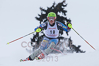 2013 MN Section 5 Alpine Ski Meet PM Run