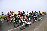 The peloton including World Champion Alejandro Valverde (ESP) Movistar Team just after Km0 the start of Stage 4 of La Vuelta 2019 running 175.5km from Cullera to El Puig, Spain. 27th August 2019.<br /> Picture: Eoin Clarke | Cyclefile<br /> <br /> All photos usage must carry mandatory copyright credit (© Cyclefile | Eoin Clarke)