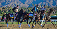 Close Hatches and Royal Delta, trained by Bill Mott, train for the Breeders' Cup Distaff at Santa Anita Park in Arcadia, California on October 30, 2013.
