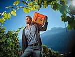 Reto Muller, octobre 2016, dans ses vignes au dessus de Fully © sedrik nemeth