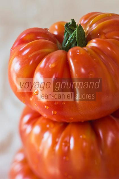 Europe/France/Aquitaine/47/Lot-et-Garonne/Fongrave: Tomate beefmaster, chez Elodie Chauvel, agricultrive en agriculture raisonnée à la Ferme des Tuileries