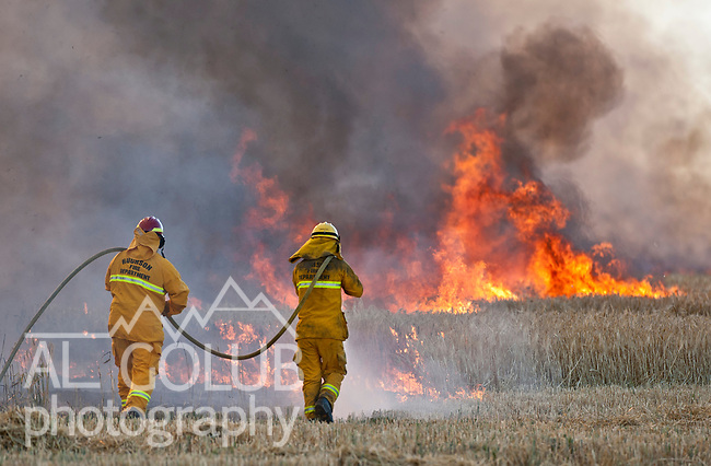 June 21, 2011  Waterford, California--Fire in wheat field corner of Whitmore and Montpelier, Stanislaus consolidated fire dept.<br /> Photo by Al Golub/Golub Photography