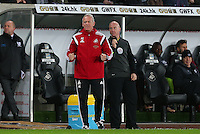 Swansea City caretaker manager Alan Curtis gestures on the touchline during the Barclays Premier League match between Swansea City and West Ham United played at The Liberty Stadium, Swansea on 20th December 2015