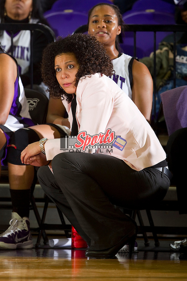 High Point Panthers head coach DeUnna Hendrix during second half action against the Liberty Flames at Millis Athletic Center on February 2, 2013 in High Point, North Carolina.  The Flames defeated the Panthers 67-59.   (Brian Westerholt/Sports On Film)