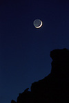 Mountain lion and New Moon, Miller Butte.