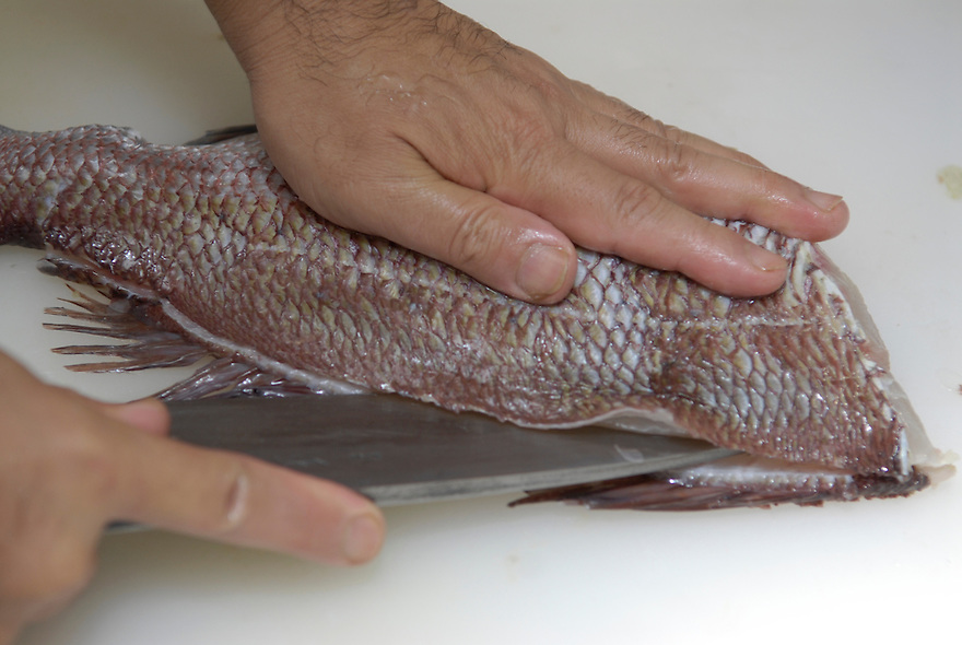 Sakai Shouji, a sushi chef working just a few doors down from the knife shop begins to fillet a fish using one of their knives.