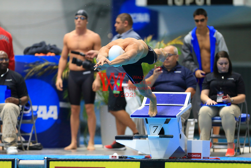 The University of Southern California men's swimming and diving team compete at the 2017 NCAA National Swimming and Diving Championships in Indianapolis, IN. March 25, 2017<br /> (Photo by Walt Middleton Photography 2017)