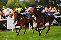Winner of The Party Continues At The Chapel Nightclub Handicap, Lyrica's Lion (8) ridden by David Egan and trained by Michael Attwater  during Ladies Evening Racing at Salisbury Racecourse on 15th July 2017