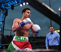 "CARSON, CA- APRIL 20: ROLANDO ROMERO in his fight against ANDRES FIGUEROA during the Fox Sports ""PBC on Fox"" Fight Night at Dignity Health Sports Park on April 20, 2019 in Carson, California. (Photo by Frank Micelotta/Fox Sports/PictureGroup)"