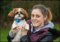 BNPS.co.uk (01202 558833)<br /> Pic: PhilYeomans/BNPS<br /> <br /> Plucky Bertie with rescue centre worker Melissa Bull.<br /> <br /> Meet Bertie the bow-legged Shih-Tzu puppy...<br /> <br /> A rescue centre has launched a crowd funding page to raise the &pound;4,000 needed to help him run around again.<br /> <br /> One year old Bertie has been abandoned by his owners who couldn't afford the cost of his life changing operations, but Ardley rescue centre boss Annabelle Weir from Bicester in Oxfordshire is determined to give bow-legged Bertie a second chance.