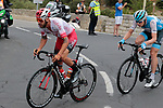 4 man early breakaway including Loic Chetout (FRA) Cofidis Solutions Credits and Daniel Turek (Cze) Israel Cycling Academy during Stage 1 of the Route d'Occitanie 2019, running 175.5km from Gignac-Vallée de l'Hérault to Saint-Geniez-d'Olt-et-d'Aubrac , France. 20th June 2019<br /> Picture: Colin Flockton | Cyclefile<br /> All photos usage must carry mandatory copyright credit (© Cyclefile | Colin Flockton)