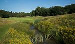 DEN DOLDER - Hole 3.  Golfsocieteit De Lage Vuursche. COPYRIGHT KOEN SUYK
