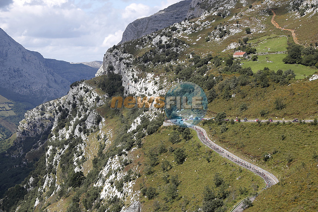 The peloton climb during Stage 13 of La Vuelta 2019 running 166.4km from Bilbao to Los Machucos, Spain. 6th September 2019.<br /> Picture: Luis Angel Gomez/Photogomezsport | Cyclefile<br /> <br /> All photos usage must carry mandatory copyright credit (© Cyclefile | Luis Angel Gomez/Photogomezsport)