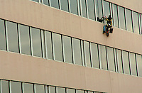 Window washer, Baltimore.