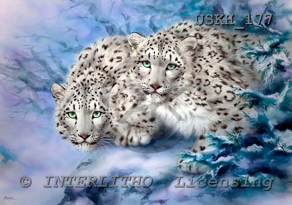 Kayomi, REALISTIC ANIMALS, paintings, snow leopard, YoungExplorers_M, USKH177,#A# realistische Tiere, realista, illustrations, pinturas