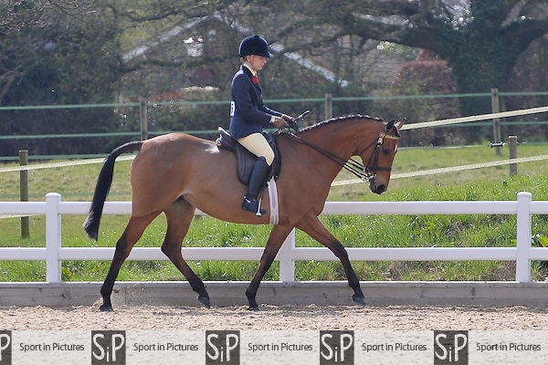 Second place Daltorn \Leagcy ridden by Hannah Carter. Class 15. Small Hack. RIHS Qualifiers.  Brook Farm Training Centre. Essex. 05/04/2015. MANDATORY Credit Peter Reynolds/Sportinpictures - NO UNAUTHORISED USE - 07837 394578