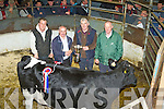 Kieran Cahill Ahane, Knocknagoshel whose cow was judged to be the Supreme Champion at the Castleisland Mart, Show and Sale of Dairy stock in the Mart on Friday, l-r: George O'Callaghan,  Jimmy Roche Castleisland Mart, Kieran Cahill and Jerome Leen Judge..