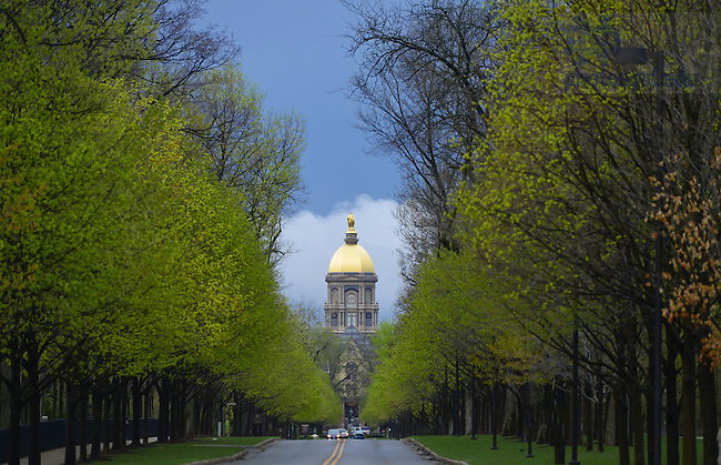 Mar. 23, 2012; Notre Dame Avenue..Photo by Matt Cashore/University of Notre Dame