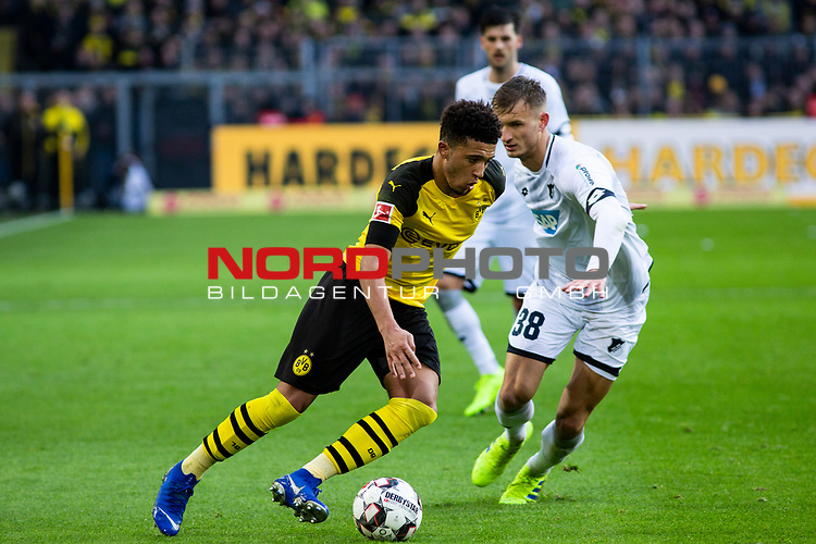 09.02.2019, Signal Iduna Park, Dortmund, GER, 1.FBL, Borussia Dortmund vs TSG 1899 Hoffenheim, DFL REGULATIONS PROHIBIT ANY USE OF PHOTOGRAPHS AS IMAGE SEQUENCES AND/OR QUASI-VIDEO<br /> <br /> im Bild | picture shows:<br /> Jadon Sancho (Borussia Dortmund #7) im Duell mit Stefan Posch (Hoffenheim #38),  <br /> <br /> Foto &copy; nordphoto / Rauch