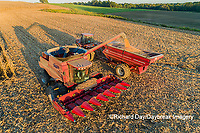 63801-12317 Harvesting corn and unloading into grain cart in fall-aerial  Marion Co. IL