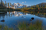 Mount Baker-Snoqualmie National Forest, Washington<br /> Evening light on Mt Shuksan from the grassh shore of Picture Lake, autumn