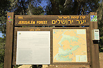 Israel, a view of Jerusalem Forest